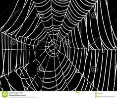 Vector Spider Web Background T Royalty Free Stock Photo - Image ...