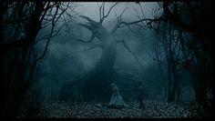 Sleepy Hollow. Esta fotografía tiene un tono de luz azulado, como en casi toda la película. Los detalles pequeños de luz aportan que la imagen se mas tenebrosa, al igual que la niebla que gracias a esos detalles de luz casi se puede sentir.