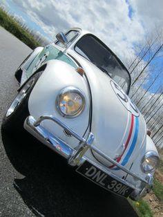 CLASSIC VW BEETLE 'HERBI...