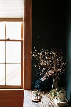 san francisco lifestyle photographer / cindy Loughridge