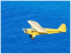 Get excellent aerial views from the piper cub airplane tour rental