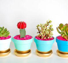 Perfect Elegant Indoor Planter By Paula Haynes Design Ideas
