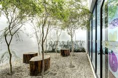 courtyard / Punto Surf / Elías Rizo Arquitectos