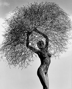 herb ritts photography | Herb Ritts, Neith with Tumbleweed, Paradise Cove