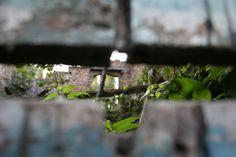 Urban Photography Nieuw Erenstein  08 2016