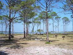 Saint George Island Sunset Beach Property