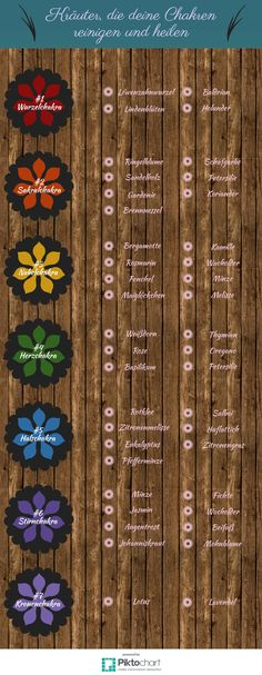 Chakren reinigen mit Kräutern? Welche Pflanzen sich dafür eignen und alles was du sonst darüber wissen musst, erfährst du in diesem Artikel.