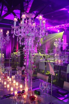 Gala Design | Decor