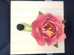 A large paper flower made with the Cricut Giant Flower cartridge