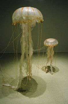 Opening Aug 2 at Redux Studios : : Gwyneth Scally: Wilderness Management Sculpture Textile, Fish Sculpture, Jellyfish Light, Pink Jellyfish, Medusa, Blue Artwork, Deco Nature, Water Animals, Unusual Art