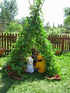 Build a cheap and easy bean fort