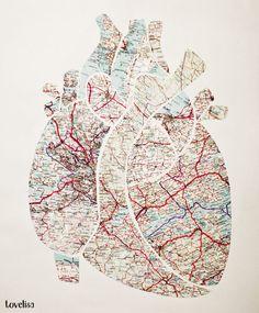 anatomical heart - map