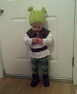 Cutest Halloween costumes for babies - Homemade Shrek Costume