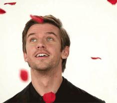 I got Dan Roses! Quiz: Which Dan Stevens GIF Should You Stare at Today? | Movies