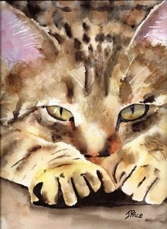Tabby Cat watercolor print by Joan Price Animals Watercolor, Watercolor Cat, Illustration Art, Illustrations, Cat Drawing, Animal Paintings, Dog Art, Crazy Cats, Pet Portraits