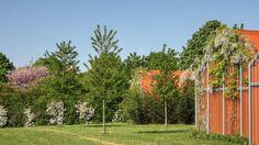 Parc de la Saussaie-Pidoux à Villeneuve-Saint-Georges - Cabanes orange