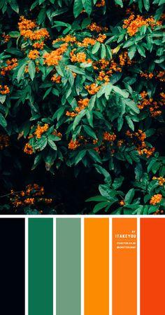 Orange Color Schemes, Orange Color Palettes, Color Schemes Colour Palettes, Green Colour Palette, Color Combos, Christmas Colour Palette, Green Pallete, Green Colors, Colour Board