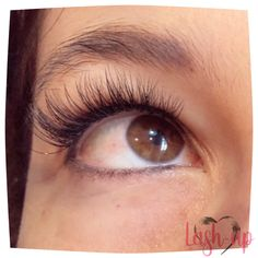 Lash-up Lashes   #lashup #extensions #lift #individual #extensionquotes #lashquotes #extensionsbeforeandafter #eye #long #extensionscare #quoteseyelashextensions #hybrid #classic #mink #ccurl #colored #classicfullset #hybridfullset Lash Quotes, Lash Up, C Curl, Eyelash Extensions, Mink, Eyes, Classic, Color, Derby