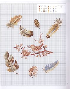 0 point de croix grille et couleurs de fils petit oiseau et plumes - cross stitch little bird and feathers