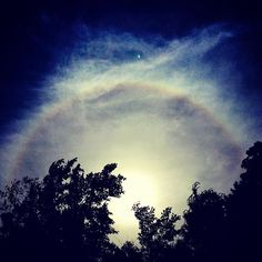 キャプション→#japan #landscape #sunhalo #nature #phenomenon #sun #forest #halo #whiterainbow #rainbow #instagram #white #風景 #太陽 #白虹 #日暈 #現象 #自然 #旅行 #自然 #森林 #木 #虹 #ハロ #青空 ユーザー→ribuco 場所→