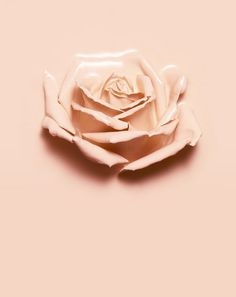 Cosmetic Rose (rose sculpted out of cosmetics)- Isabelle Bonjean (wearecasey)