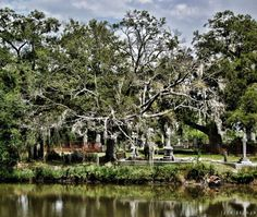 Magnolia Cemetery Charleston, SC - not the pepsi plant this map sucks