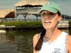 Marathon's Dolphin Research Center