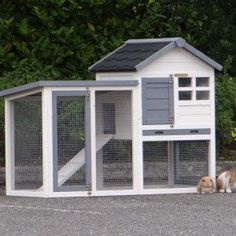 Kaninchenstall mit Auslauf online kaufen?   Animalhouseshop.de