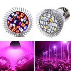 A full spectrum LED bulb suitable for greenhouse flower fruit Hydroponic Growing, Growing Plants, Hydroponics, Led Grow Light Bulbs, Best Led Grow Lights, Full Spectrum Light, Grow Tent, Fruit Plants, Outdoor Lighting