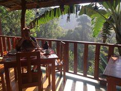 Tea Forest Lodge Guesthouse, Ella: Bekijk 8 reizigersbeoordelingen, 84 onthullende foto's en goede aanbiedingen voor Tea Forest Lodge Guesthouse, gewaardeerd als nr.3 van 126 bijzondere accommodaties in Ella en geclassificeerd als 4,5 van 5 bij TripAdvisor.