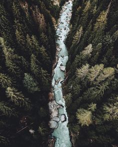 Discovered by Find images and videos about nature, green and forest on We Heart It - the app to get lost in what you love. Landscape Photography, Nature Photography, Travel Photography, Amazing Photography, Fashion Photography, Perspective Photography, Photography Backgrounds, Terre Nature, Photos Voyages