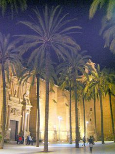 Almería Cathedral  - photo: Robert Bovington  #Almeria #Andalusia #Spain #España http://bobbovington.blogspot.com.es/2013/05/almeria-by-robert-bovington.html