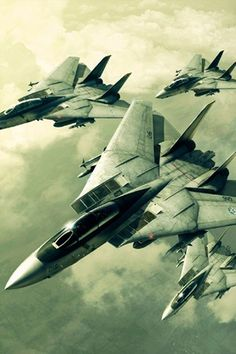 F-14 Tomcats from ace combat 5.