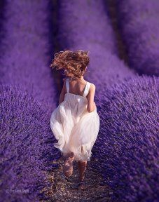 Girl running in these beautiful scents and colorful lavender fields in Provence, France Lavender Cottage, Lavender Blue, Lavender Fields, Lavender Plants, Raindrops And Roses, Malva, Foto Art, All Things Purple, Purple Flowers