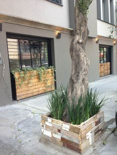 We love the design pallets gives when used in a urban environment! This reclaimed wood aspect for the planters really goes well with the perfect green of plants!  #PalletPlanter, #RecyclingWoodPallets, #Street, #Urban