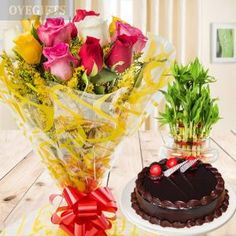 10 Mix roses, Half Kg Chocolate Truffle Cake & Lucky Bamboo Plant - 2 Layer Online Cake Delivery, Online Flower Delivery, Friendship Day Gifts, Lucky Bamboo Plants, Chocolate Truffle Cake, Marriage Gifts, Marriage Anniversary, Cake Truffles, Types Of Cakes