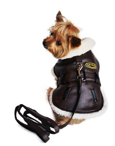 Doggie Design Vintage Bomber Faux Leather Harness Jacket with Matching Leash in color Brown/Black