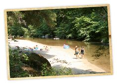 """San Lorenzo River Swimming Hole, Henry Cowell State Park. How to find: Look for the """"Ox Parking Lot"""" sign and walk down the Ox Trail. To reach the Garden of Eden, cross the railroad tracks, continue .25 mile and look for the signed spur trail on the left. To find the other, more secluded beach, cross the railroad tracks, go 50 feet and take a spur trail to the left. Look for a brown """"State Property"""" sign on a 20-foot tall tree stump; this sign is by the correct spur trail."""