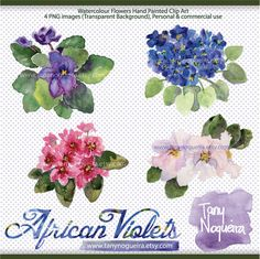 African Violets clip art images watercolor hand painted purple flower Instant Download for blog cards invitations scrapbooking