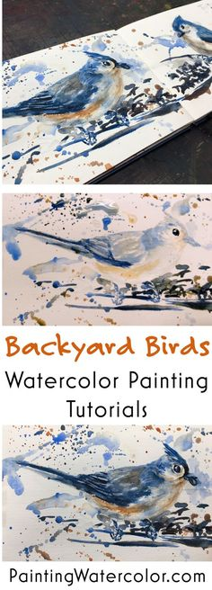 Backyard Bird Sketch, Tufted Titmouse 2 watercolor painting tutorial by Jennifer Branch