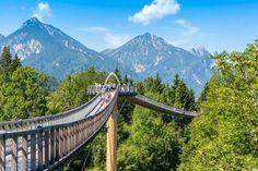 Ein spannendes Ausflugsziel für Familien ins Walderlebniszentrum Ziegelwies bei Füssen mit Baumkronenweg, Berg- und Auwaldpfad sowie schönem Einkehrtipp!