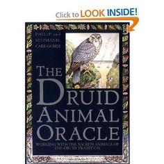 Druid Animal Oracle: Philip Carr-Gomm, Stephanie Carr-Gomm, Bill Worthington: 9780671503000: Amazon.com: Books