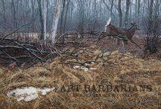 http://www.artbarbarians.com/gallery2/images/154/superior-seasons-whitetailed-deer-fine-art-print-eric-bjorlin-large101118144.jpg