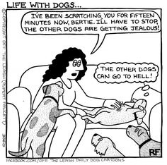 Life With Dogs © Off The Leash / Rupert Fawcett