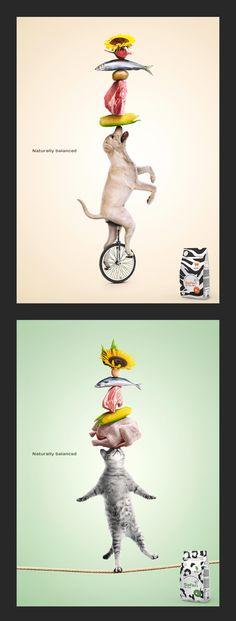 Корм Safari Реклама © Сергей Прокопчук