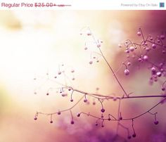 flower photography botanical pink blossoms by mylittlepixels, $22.50