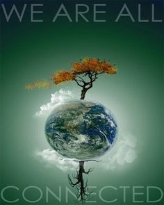 The Earth Is A Sentient Living Organism - Stop Living On The Earth And Start Cohabitating With Her