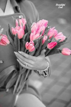 Splash Photography, Photo B, Color Splash, Decoration, Flowers, Plants, Image, Beauty, Pink