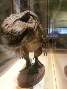 The T-Rex they used for Jurrasic Park! :o