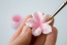 How to make a gum paste flower {CakeJournal}